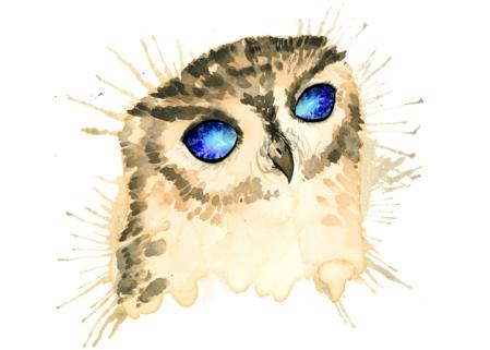 Elizabeth_Turner_elizabethdraws.com_14-11-17_StarryOwl